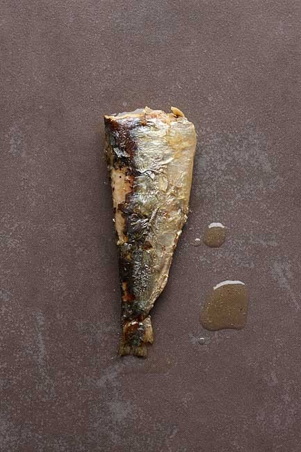 http://www.peperodriguez.es/files/gimgs/th-6_Lata-Sardinas-Blanco0544.jpg